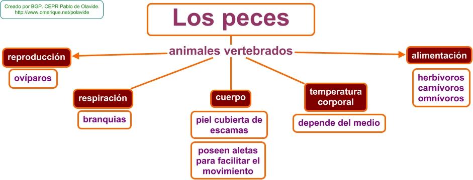 for Peces alimentacion