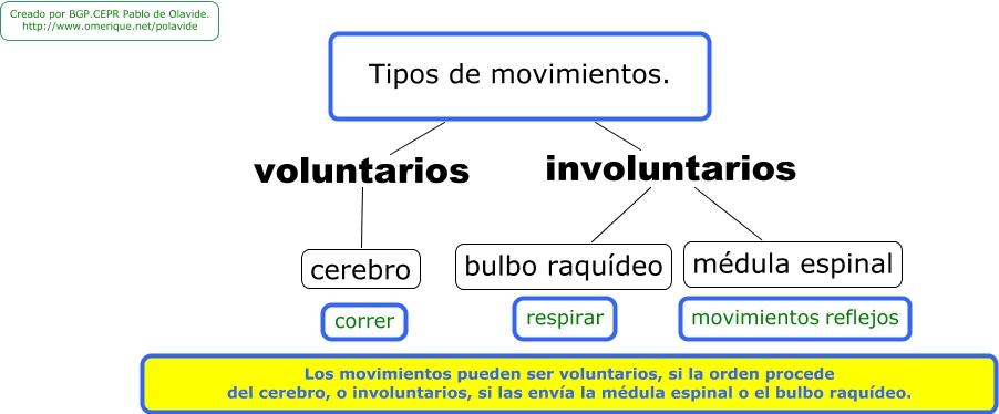 Tipos - Tipos de sensores de movimiento ...